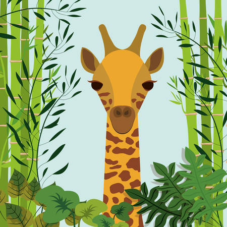 wildlife: animal wildlife design, vector illustration eps10 graphic