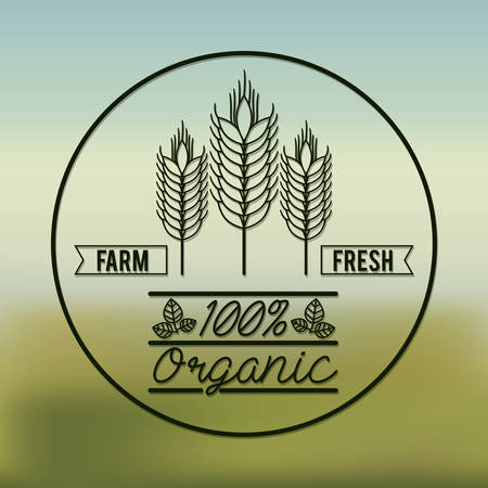 natural food: organic product design, vector illustration eps10 graphic
