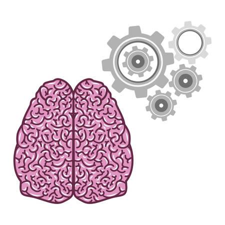 brain illustration: brain thinking design, vector illustration eps10 graphic