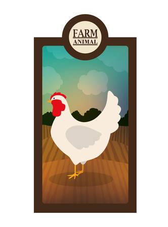barnyard: farm animal design, vector illustration eps10 graphic Illustration