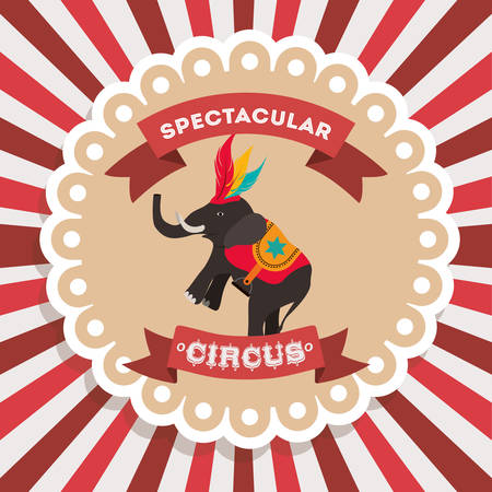 trained: spectacular circus show design, vector illustration eps10 graphic