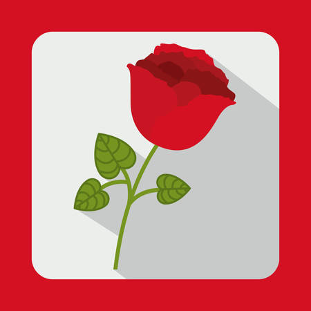 red rose: bouquet of roses design, vector illustration eps10 graphic