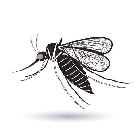 bloodsucker: infectious gnat design, vector illustration eps10 graphic