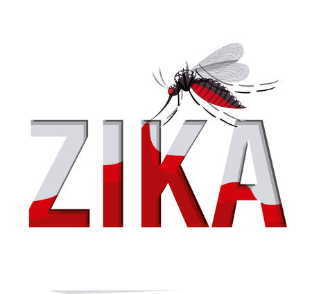 aedes: the Zika virus design, vector illustration eps10 graphic Illustration