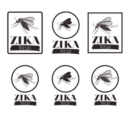 infectious: the Zika virus design, vector illustration eps10 graphic Illustration