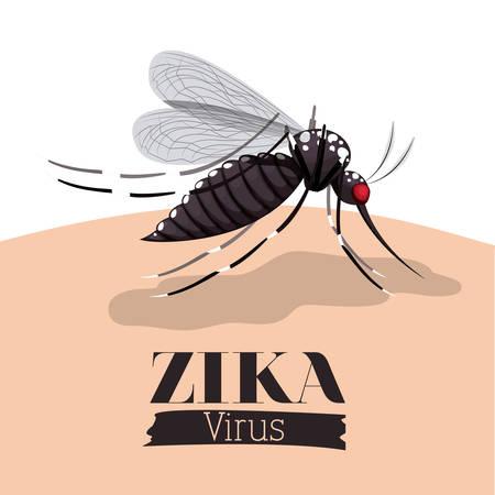 transmitted: the Zika virus design, vector illustration eps10 graphic Illustration