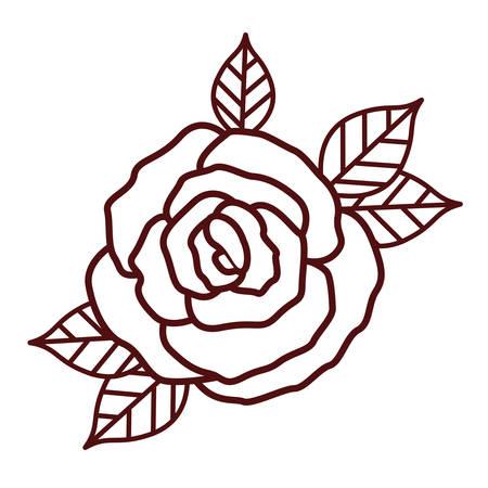 beautiful rose isolated icon design, vector illustration graphic Vetores