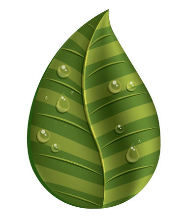 droplets: leaf with water droplets isolated icon design, vector illustration  graphic