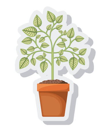 plant in pot: tree plant pot isolated icon vector illustration design