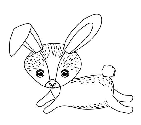 wildlife: rabbit cute wildlife icon vector isolated graphic