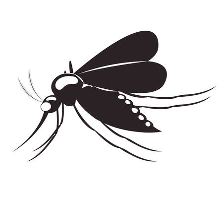 invertebrate: fly transmitter isolated icon vector illustration design Illustration