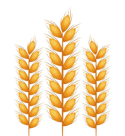spikes: wreath spikes nature isolated icon vector illustration design Illustration