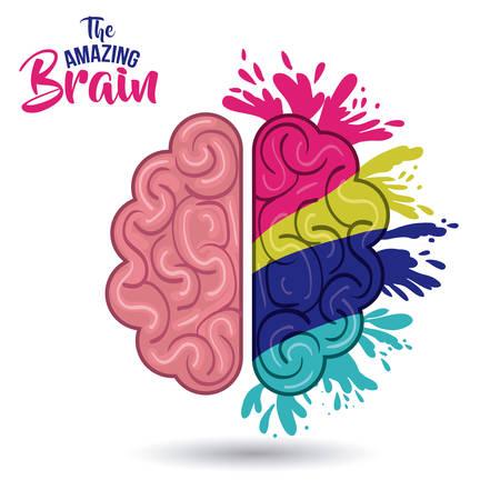 amazing: the amazing brain isolated vector illustration design