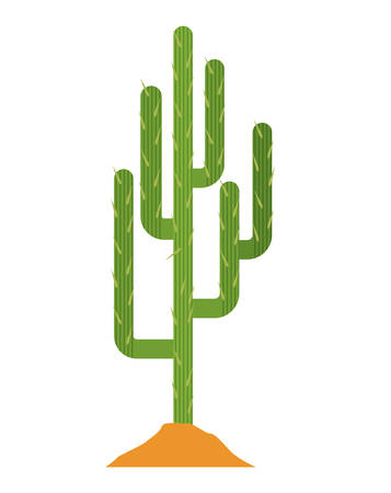 arid: Cactus and earth icon. Plant deset and green theme. Isolated design. Vector illustration