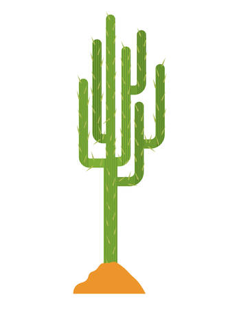 Cactus and earth icon. Plant deset and green theme. Isolated design. Vector illustration