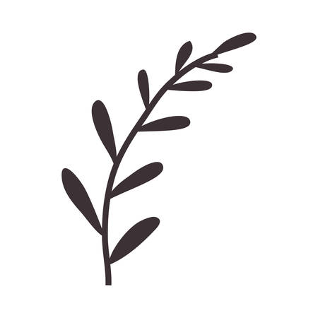 ramification: silhouette stems with few leaves vector illustration