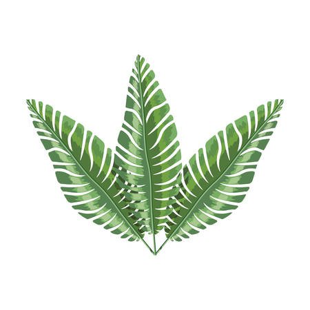 a bough: green branch with multiple leaves vector illustration