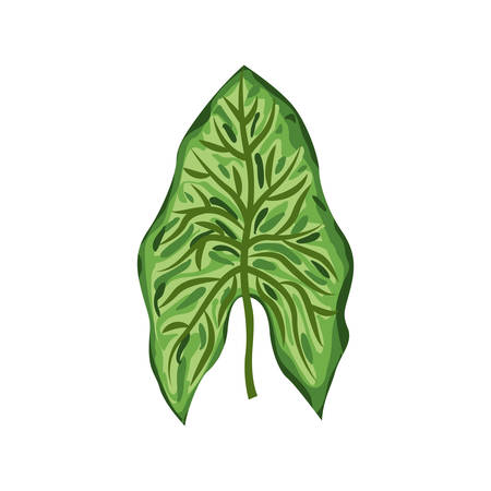 roped: green leaf in roped form vector illustration