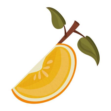 market gardening: orange fruit icon over white background. healthy and natural food design. vector illustration