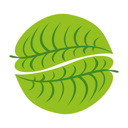 simple leaf icon image vector illustration design