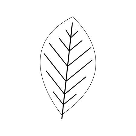 vegetate: simple leaf icon image vector illustration design