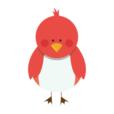 bird cartoon icon image vector illustration design