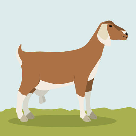 Goat icon. Animal life nature and fauna theme. Colorful design. Vector illustration Illustration
