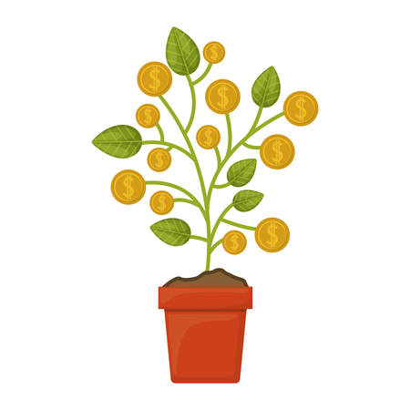 money plant in a pot with gold coins over white background. vector illustration Illustration