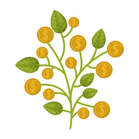 money plant with gold coins over white background. vector illustration