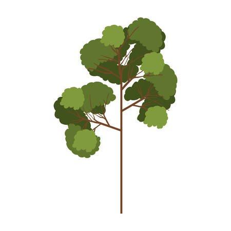 leafy: silhouette tree with leafy branches model three vector illustration