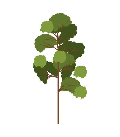 leafy: silhouette tree with leafy branches model five vector illustration