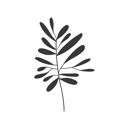 gray scale small leaves olive vector illustration Illustration