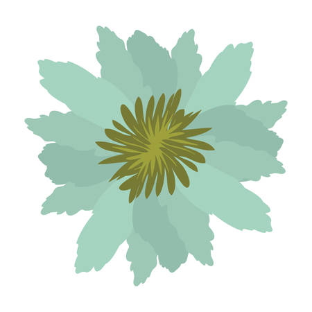 green petals of flower with sepal vector illustration