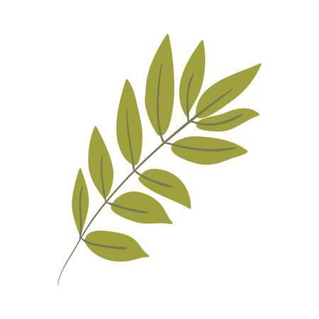 Silhouette ovalen Blätter mit Verzweigungen Vektor-Illustration
