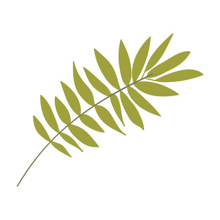 ramification: Green leaf Silhouette with ramifications vector illustration