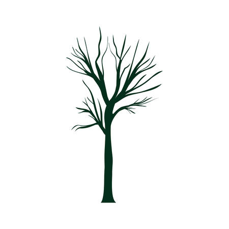 dry tree plant with branches icon over white background. vector illustration Illustration