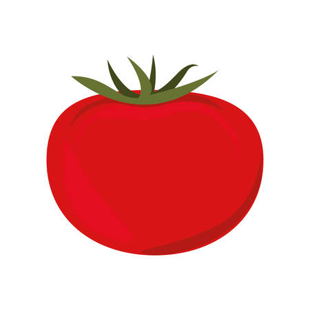 veg: red tomato vegetable icon. healthy food design. vector illustration Illustration
