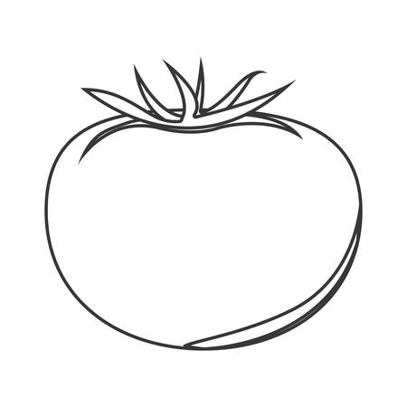 veg: silhouette of tomato vegetable icon. healthy food design. vector illustration