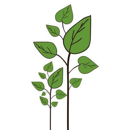 illustraion: green plant with leaves icon over white background. vector illustraion Illustration
