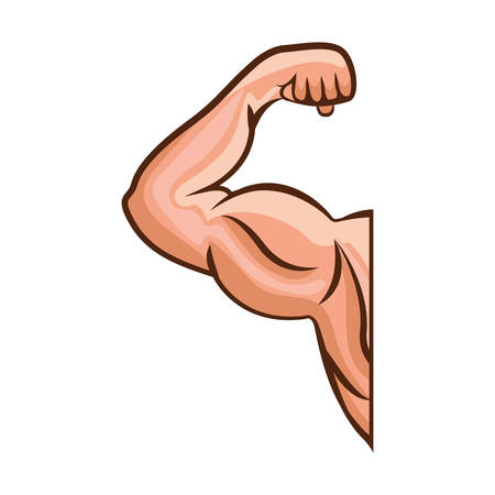 silhouette of Man arm bodybuilding muscles. vector illustration Vettoriali