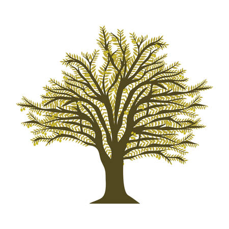 green olive oil tree icon over white background. vector illustration