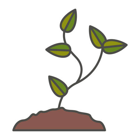Plant with leaves icon. Gardening nature green and home theme. Isolated design. Vector illustration