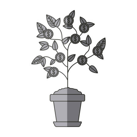 Plant with coins icon. Investment ideas profit and start up theme. Isolated design. Vector illustration