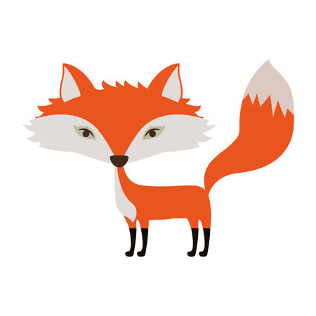 reserve: Fox icon. Animal cartoon and nature theme. Isolated and drawn design. Vector illustration