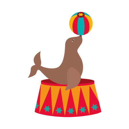 show of seal over white background. circus colorful design.  illustration