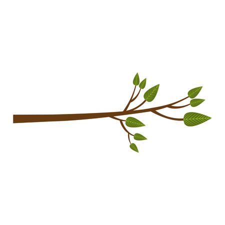 vegetate: tree branch icon image vector illustration design Illustration