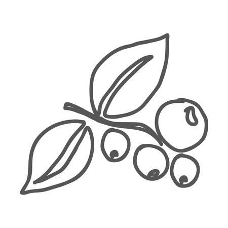 planta de cafe: planta de café imagen de icono ilustración vectorial de diseño Vectores