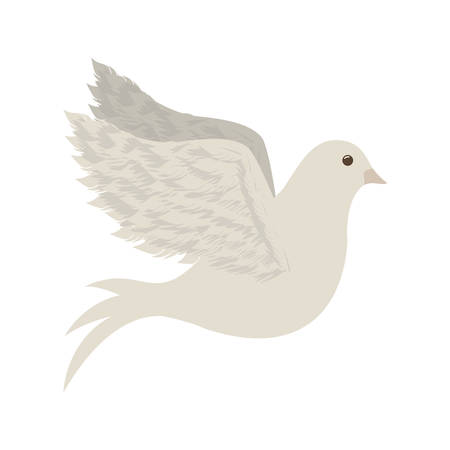 flocks: peace dove icon image vector illustration design