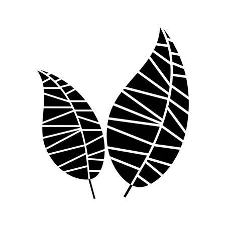 vegetate: leaf abstract icon image vector illustration design