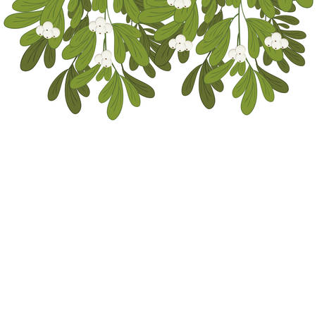 ramification: Christmas upper edge mistletoe with white flowers vector illustration
